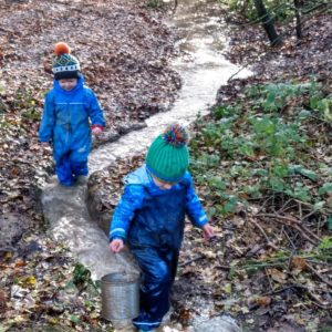 Starting a Forest School